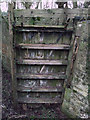 SU1997 : Derelict lock gate, disused Thames and Severn Canal by Vieve Forward