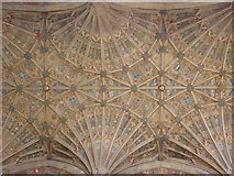 ST6316 : Sherborne: abbey fan vaulting (2) by Chris Downer