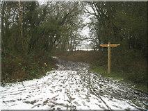 SU7953 : Footpath to Fleet by Sandy B