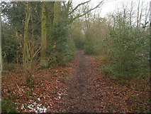 SU7953 : Hitches Hill to Fleet footpath by Sandy B