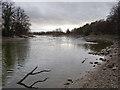 NS8593 : River Devon by William Starkey