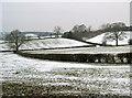 SO9866 : Fields Near Lower Bentley by Nigel Mykura