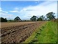NZ2111 : Farmland, Manfield by Andrew Smith
