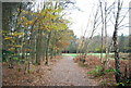 TQ2834 : Footpath, Tilgate Forest Golf Course by N Chadwick