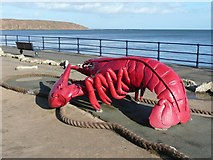 TA1280 : Giant lobster, Filey by Humphrey Bolton