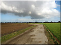 TG4019 : Footpath to Market Road, Ludham by Evelyn Simak