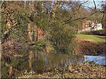 SJ8382 : River Bollin, Quarry Bank Mill by David Dixon