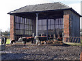 SJ8383 : Oak Farm, Cow Byre by David Dixon