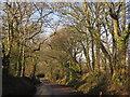 ST0806 : Broad Road by Derek Harper
