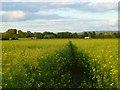 SP7705 : Farmland, Longwick by Andrew Smith