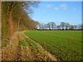 SP9101 : Farmland, South Heath, Great Missenden by Andrew Smith