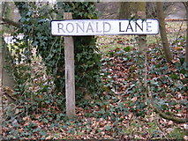 TM3864 : Ronald Lane sign by Adrian Cable
