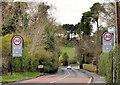 J4781 : The Crawfordsburn Road, Crawfordsburn (2) by Albert Bridge