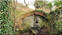 J4681 : Old hut, Crawfordsburn Country Park by Albert Bridge