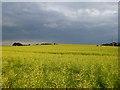 SU2381 : Farmland, Bishopstone by Andrew Smith