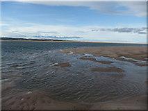 NU1536 : Budle Bay by David Brown