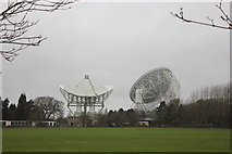 SJ7971 : Jodrell Bank - the major dishes by Peter Turner