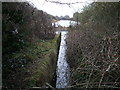 SU1385 : Large pond, disused North Wilts branch of the Wilts & Berks Canal by Vieve Forward