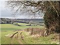 SU7134 : Meon Valley by Farringdon by Colin Smith