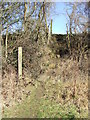 TL8635 : Footpath Junction by Keith Evans