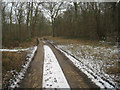 SU3942 : Paved track by Hartway Copse by Sandy B