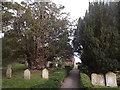SU7135 : Farringdon Churchyard by Colin Smith