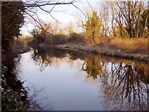 TQ0172 : The Colne Brook, looking upstream by Stefan Czapski