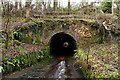 NS4175 : Witch's Tunnel by Lairich Rig