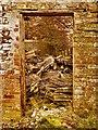 NX4638 : Through the door by Andy Farrington