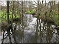 ST1413 : River Culm by Derek Harper
