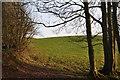 ST0216 : Mid Devon : Public Footpath & Grassy Field by Lewis Clarke