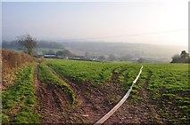 ST0215 : Mid Devon : Track to Whitnage by Lewis Clarke