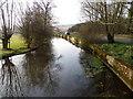 SU0425 : River Ebble, Broad Chalke - 25 by Maigheach-gheal