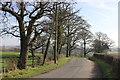 SJ8967 : Shellow Lane at Clover Bank Organic Farm entrance by Peter Turner