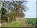 TQ5771 : Field alongside Wood Lane by Marathon
