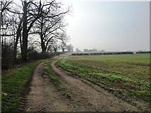 SE7160 : The track to Belle View Farm by Christine Johnstone