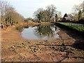 SJ4555 : Coddington Village Pond by Jeff Buck