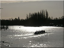 SU7682 : Silhouettes at Henley-on-Thames by Peter S