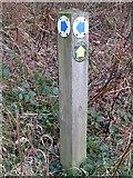 NZ7805 : North York Moors National  Park, Footpath & Bridleway signs by Mike Kirby