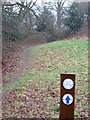 SZ0795 : Northbourne: Gulliver's Trail passes through Puck's Dell by Chris Downer