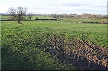 SO8259 : Farmland near Heath Farm by Philip Halling