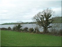 J2933 : The south-eastern shore of Lough Island Reavy by Eric Jones