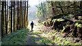 SO2824 : Walking into the sunlight by Jonathan Billinger