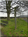 ST7396 : Cotswold Way, North Nibley by David Dixon