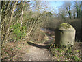 SU7851 : Tow path by Coxmoor bridge site by Given Up