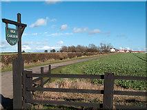 NZ2117 : Farm access road leading to High Carlbury by Trevor Littlewood
