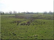 SD8653 : Enclosure on Swinden Moor by John Slater