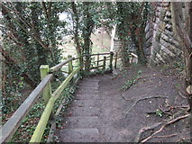 SE4843 : Walking down the steps towards the River Wharfe by Ian S