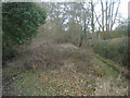 SU7852 : Access to Peatmoor Copse by Sandy B
