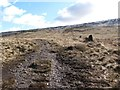 SE0805 : Ruined drystone wall climbing Hart Hill by Christine Johnstone